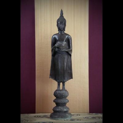 Bouddha Buddhapatra Mudra